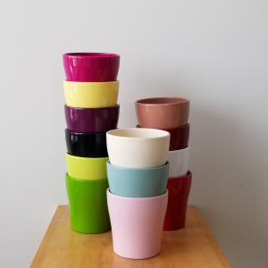 decorative ceramic container for indoor plants houseplants interior plants plant sale Toronto Etobicoke Mississauga Brampton Burlington Oakville Hamilton North York GTA deco containers