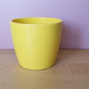 ceramic container Marco 6 inch for indoorplants houseplants sale Toronto Mississauga Oakville Brampton Burlington GTA