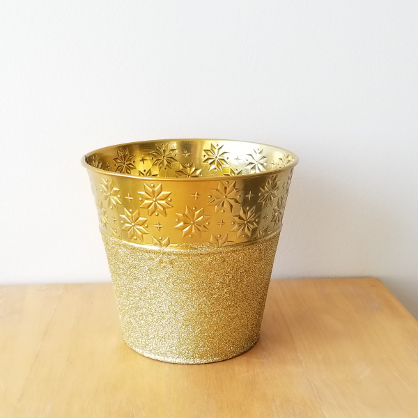 Tin decorative Christmas container for indoor plants houseplants sale Mississauga Toronto Etobicoke Brampton Burlington Oakville GTA