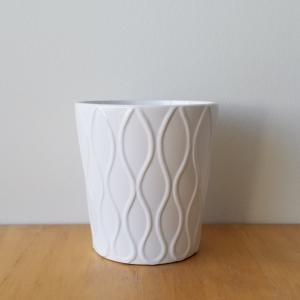 decorative ceramic container for indoor plants houseplants interior plants plant sale Toronto Etobicoke Mississauga Brampton Burlington Oakville Hamilton North York GTA