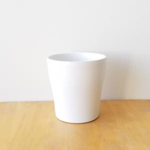 decorative ceramic container for indoor plants houseplants interior plants plant sale Toronto Etobicoke Mississauga Brampton Burlington Oakville Hamilton North York GTA white deco container