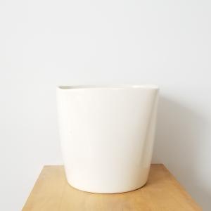 Decorative ceramic containers for Indoor plants houseplants airpurifyng plants indoors plant sale Interiorplants plant gifts GTA Mississauga Toronto Etobicoke Brampton Burlington Hamilton Oakville Ontario Richmond Hill North York GTA